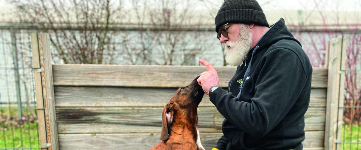 Training auf Augenhöhe gibt dem Hund Vertrauen und Sicherheit.